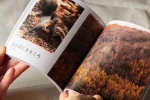 【写真整理】写真1年分をMybookでフォトブックにした感想と大量の写真の選び方。