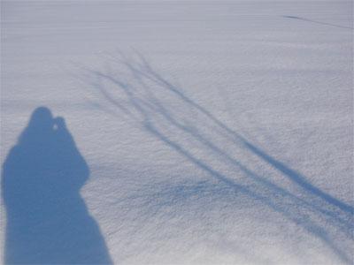 2008年の目標「きらく」の一枚目の画像