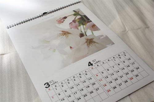 フジフイルムモールのマイカレンダー