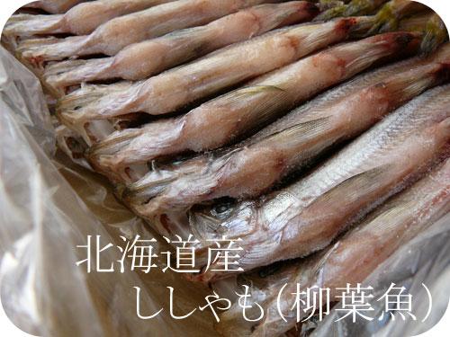 これが本物!北海道産ししゃも(柳葉魚)の参考画像