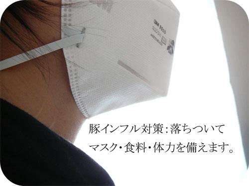 豚インフルエンザ対策:マスク・食料と体力の備蓄開始の一枚目の画像