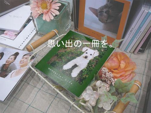 フォトブックはCDサイズで統一。初注文はオンラインラボ☆の参考画像