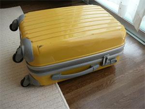 ファスナーを閉じたニッセンのトラベルキャリーバッグ