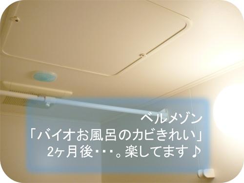梅雨のカビ防止に「バイオお風呂のカビきれい」がいい!の一枚目の画像