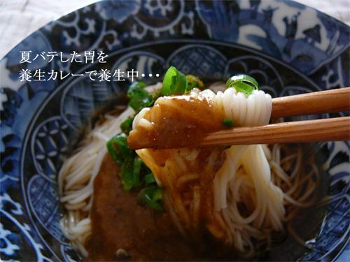 森下仁丹の食養生カレー+麺は夏のランチ向きの参考画像