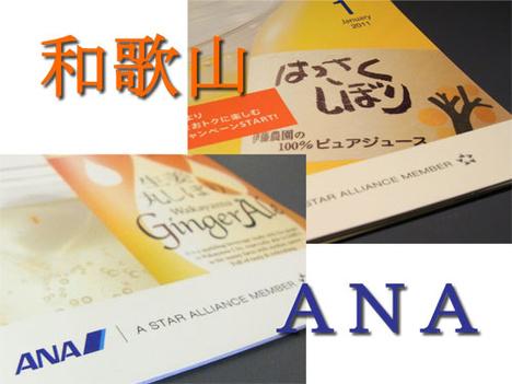 和歌山×ANA「生姜丸しぼり ジンジャーエール」と「はっさくしぼり」の参考画像