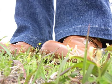 サボを履いて1か月 べネビスはやっぱり履きやすいの一枚目の画像