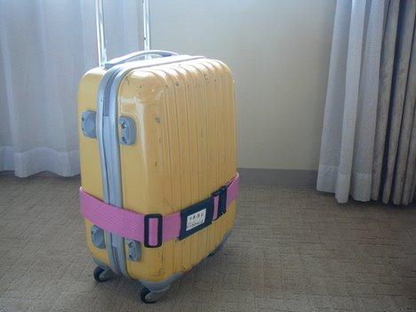 ニッセンのキャリーバッグ