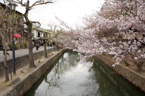 青春18きっぷde大阪発ー倉敷・美観地区旅行(2)の一枚目の画像