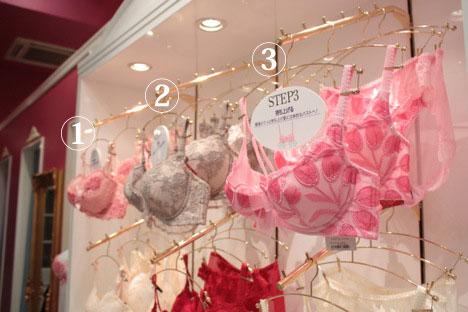 ブラデリスニューヨークの育乳ステップ1、2、3のブラジャー