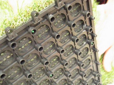 人工芝マットの写真