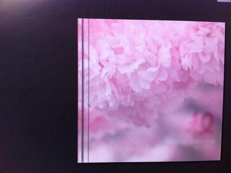 アスカネットのマイブック ハードカバーの21cm(artタイプ)を注文の参考画像