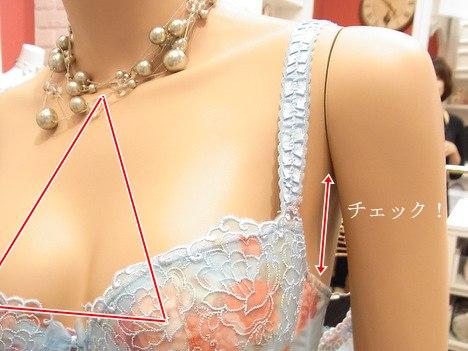 育乳ブラのつけ方、脇から下がっていたら要確認の一枚目の画像