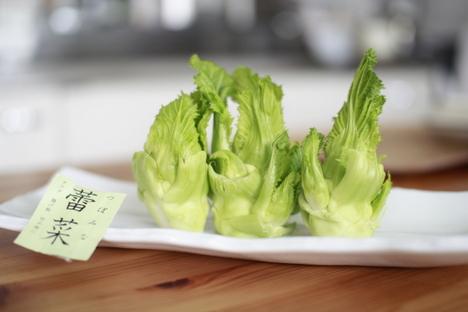 バリアーニオリーブオイル×蕾菜 ドレッシングの代わりに使っていますの参考画像