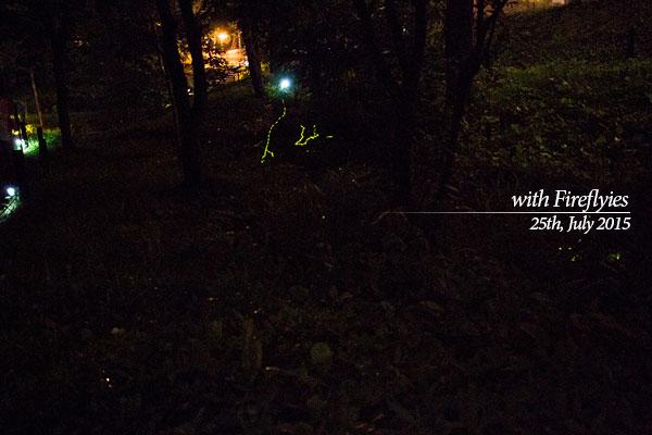 第18回「ホタル祭りin西神楽」は今日7/27(月)午後9時半までの一枚目の画像