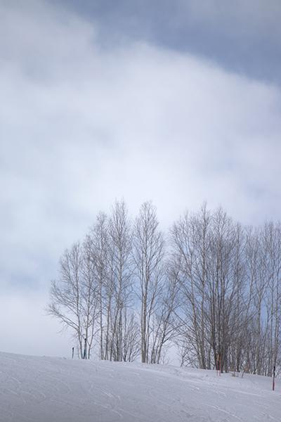 真冬の旭川