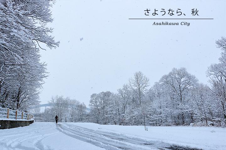 雪の季節がやってきました。の一枚目の画像