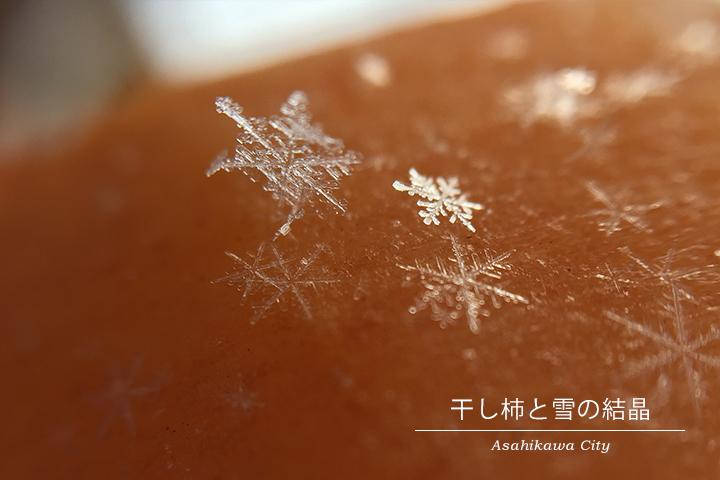雪の結晶。北海道旭川市にて氷点下14度の朝に撮影