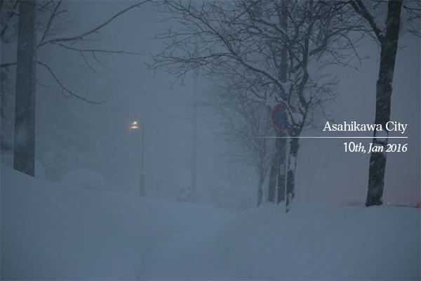 雪で視界不良の歩道
