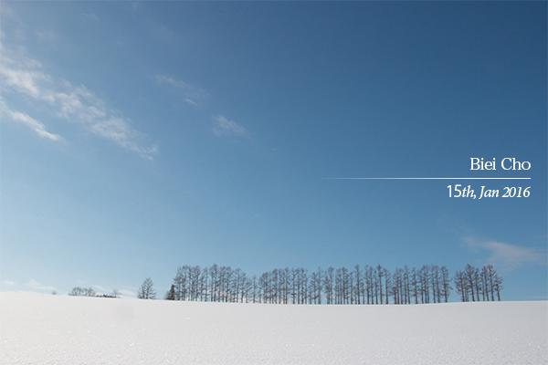 雪景色と青空の美瑛町「マイルドセブンの丘」