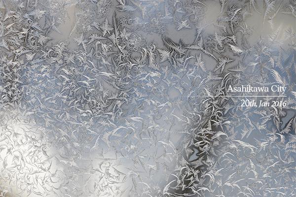 氷点下の氷紋