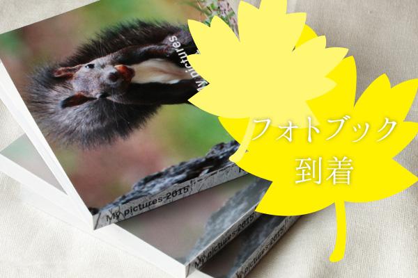 【写真整理】写真1年分をMybookでフォトブックにした感想と大量の写真の選び方。の参考画像
