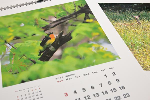 フジフイルム「マイカレンダー」