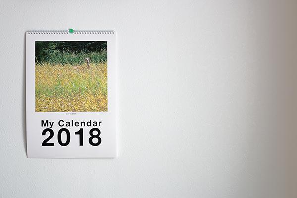 フジフイルム「マイカレンダー2018」A3壁掛けが届きました。の参考画像