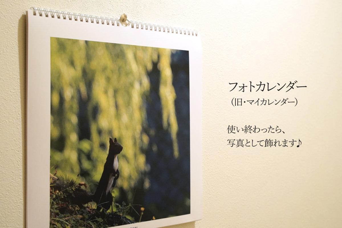 フジフイルム「フォトカレンダー(旧・マイカレンダー)2020」、セブン受取りで送料無料に。の参考画像