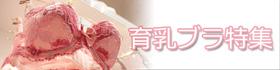 育乳ブラの感想や効果の記事を紹介するバナー